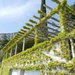 gardasee bild 082 150x150 - Fototour am Gardasee